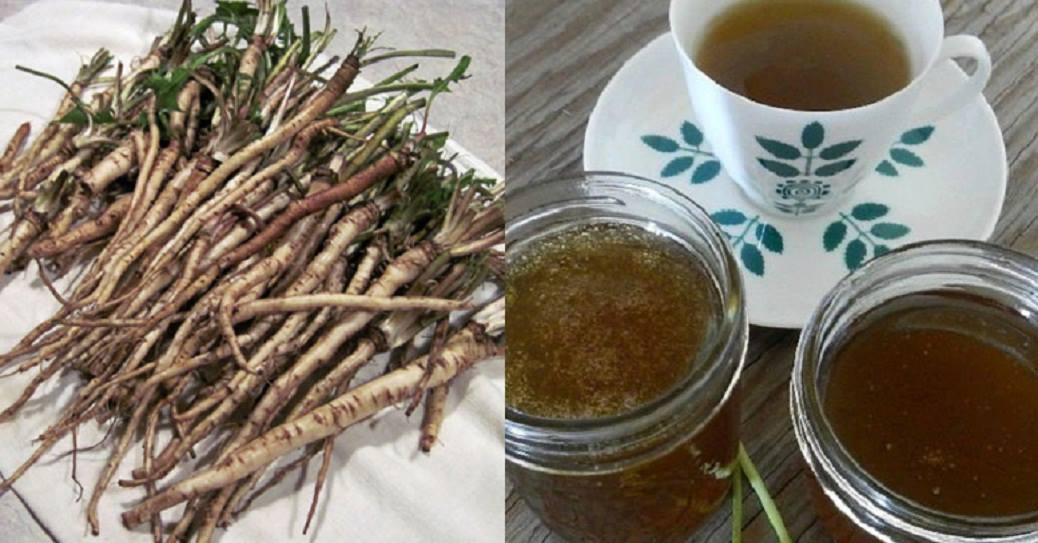 This Tea Can Kill Cancer Cells And It's More Effective Than Chemotherapy
